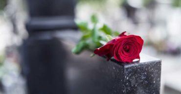Imagem de rosa vermelha em cima do túmulo