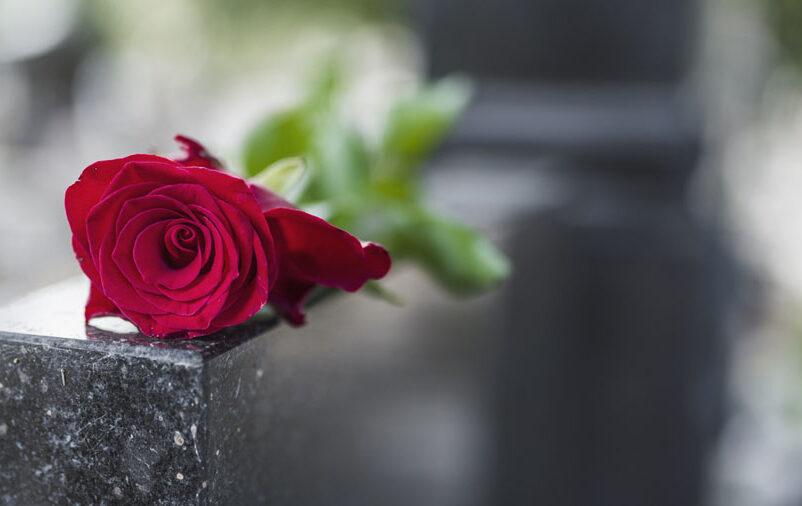 No Dia de Finados, católicos costumam visitar o túmulo de seus entes e amigos. Na imagem é possível ver uma rosa vermelha deixada sobre um mármore preto.