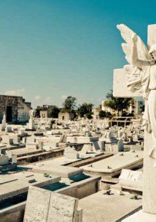 estrutura do cemitério