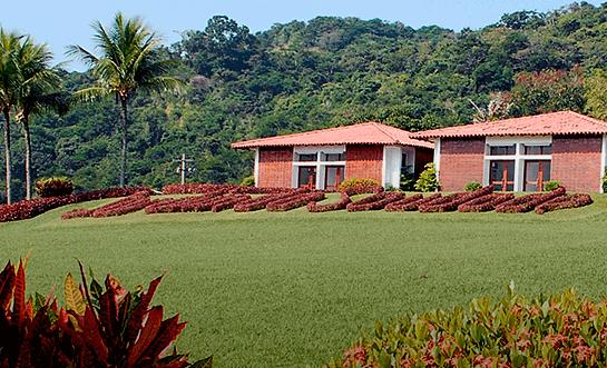 Foto Cemitério Jardim da Saudade