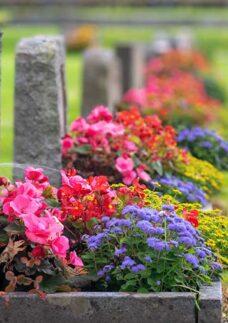 exemplo de frases para lápide em um cemitério repleto de flores